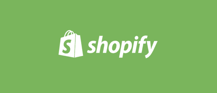 Product Count in Shopify Archives -
